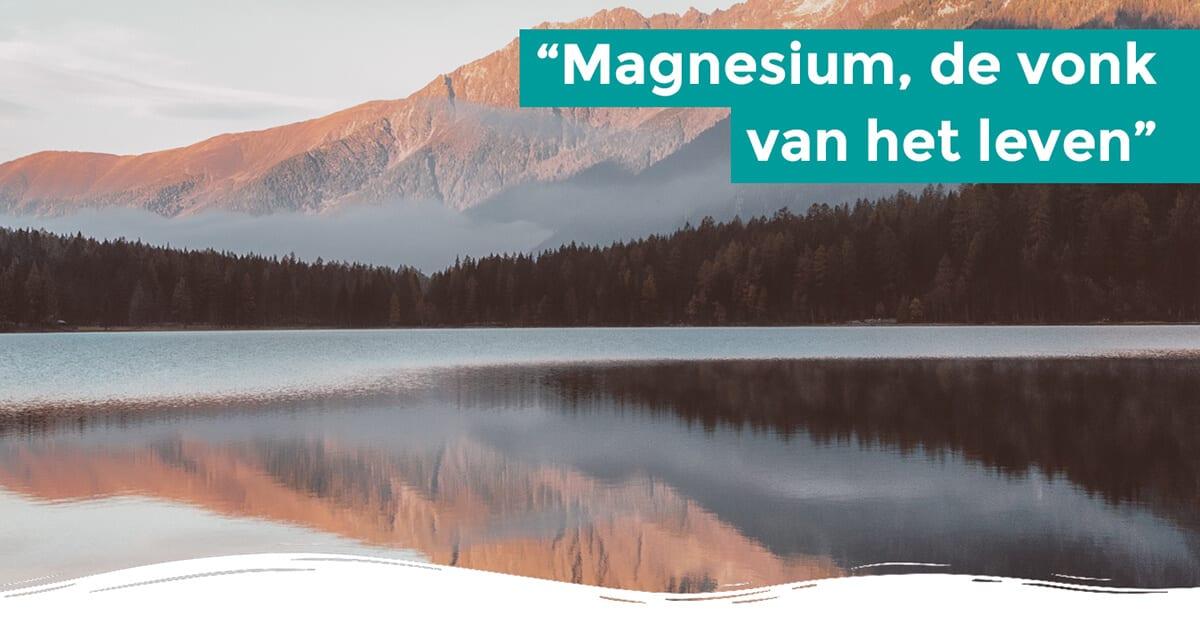 magnesium vragen .en antwoorden over magnesium